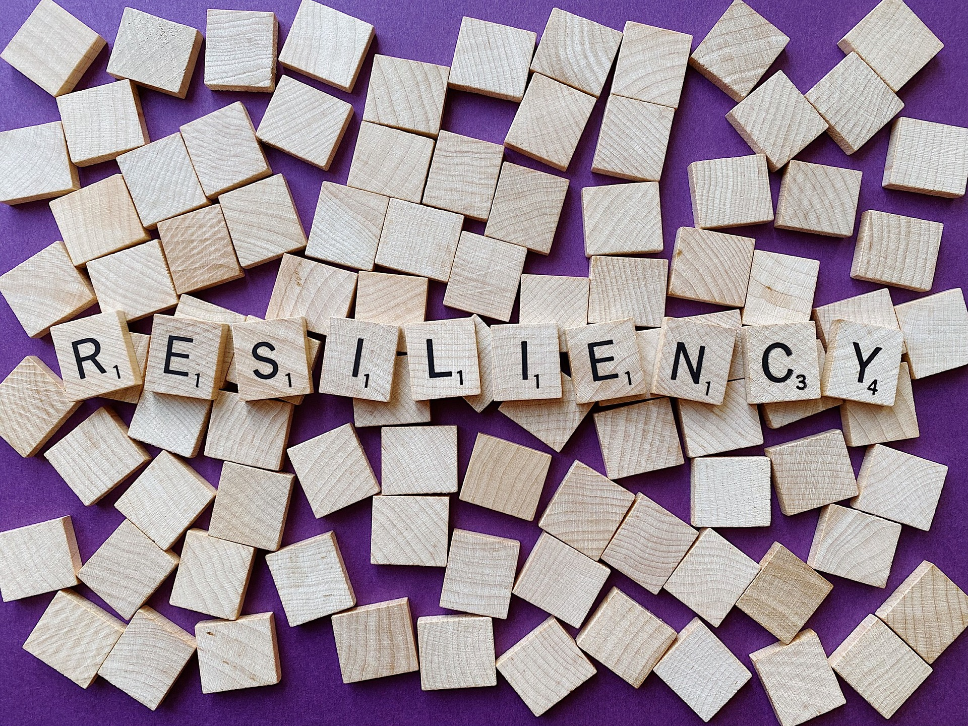 word resilience